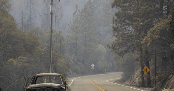 Dziesiątki pożarów spotęgowanych silnym wiatrem strawiły lasy i zabudowania w stanach Zachodniego Wybrzeża USA - Kalifornii, Oregonie i Waszyngtonie. Zniszczone są setki domów, zginęło co najmniej 15 osób, a setki tysięcy ludzi ewakuowano.