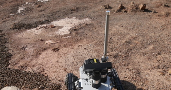 Na terenie Politechniki Świętokrzyskiej w Kielcach trwa trzydniowy finał szóstej edycji międzynarodowych zawodów robotów marsjańskich European Rover Challenge. To jedyny na świecie turniej robotyczno-kosmiczny, który odbędzie się w tym roku po ogłoszeniu pandemii koronawirusa. Ma jednak inną niż zwykle formułę. Uczestniczące w nim drużyny nie przyjechały ze swoimi robotami, natomiast bezpośrednio ze swoich krajów będą zdalnie sterować robotami udostępnionymi przez organizatorów. Jak mówi RMF FM Robert Lubański, prezes Mars Society Polska i sędzia zawodów, na potrzeby konkursu zbudowano unikatowy w skali świata tor marsjański.