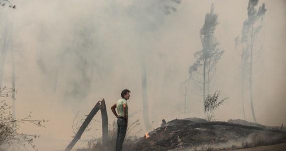 Kilka tysięcy osób z miejscowości we wschodniej Portugalii zostało ewakuowanych z powodu olbrzymich rozmiarów pożaru, który w ciągu zaledwie jednej doby strawił blisko 2500 hektarów lasów.