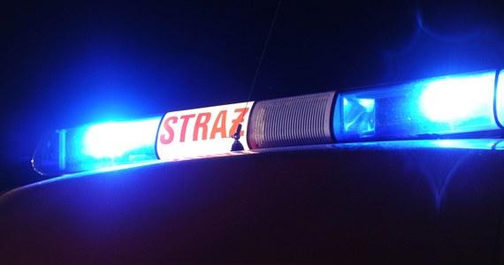 Policja nie wyklucza, że trzech mężczyzn, którzy zginęli w Płocku (Mazowieckie) w nocy z piątku na sobotę w płonącym osobowym audi, to młodzi mieszkańcy tego miasta. Wciąż trwa ustalanie okoliczności wypadku, do którego doszło, gdy auto zjechało z drogi i uderzyło w budynek mieszkalny.