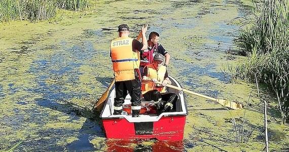 Policja poinformowała o zakończeniu poszukiwań 25-latka z gminy Czemierniki w województwie lubelskim. Jego ciało odnaleziono wczoraj ok. 1,5 km od domu.