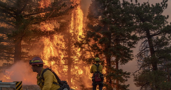 Fala groźnych pożarów, które nawiedziły zachodnie amerykańskie stany, zniszczyła tysiące obiektów i pogorszyła znacznie jakość powietrza. Dym dotarł na wschodnie wybrzeże, do Nowego Jorku, a nawet do Europy. Bezpośrednie straty szacuje się na 20 miliardów dolarów. W wyniku pożogi zmarło co najmniej 29 osób. Złapano też kilkunastu podpalaczy.