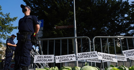 """Przed gmachem Sejmu zorganizowano symboliczny protest rolników i hodowców zwierząt przeciwko """"Piątce dla zwierząt"""". Wzdłuż ulicy Wiejskiej uczestnicy pikiety ustawili kilkaset główek kapusty."""