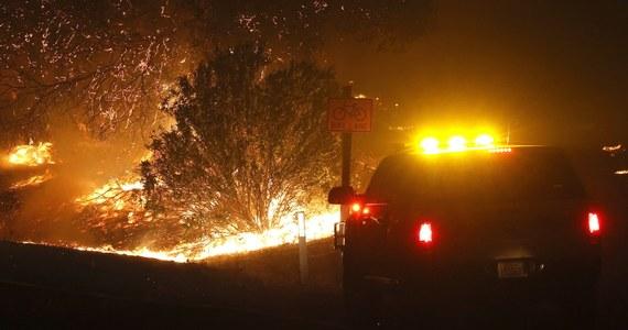 Podsycany przez silny wiatr pożar wybuchł w niedzielę w położonej w północnej części Kalifornii Dolinie Napa - słynącej z upraw winorośli i głównym ośrodku kalifornijskiego przemysłu winiarskiego.
