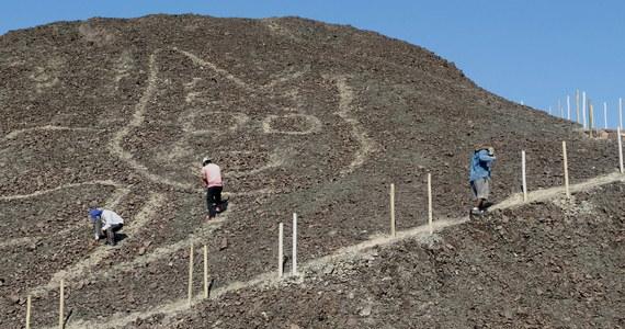 Archeolodzy z peruwiańskiego ministerstwa kultury znaleźli ogromny, 37-metrowy rysunek kota nieopodal miasta Nazca. To kolejne tego typu odkrycie w tej okolicy.