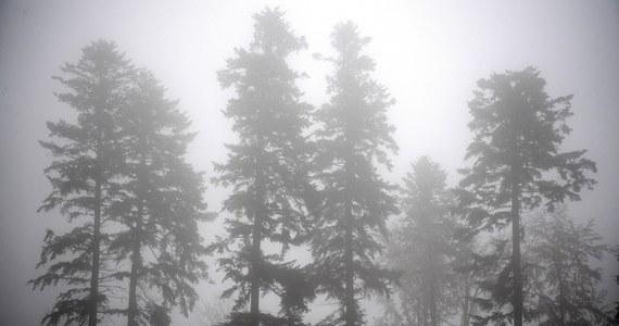 Instytut Meteorologii i Gospodarki Wodnej wydał ostrzeżenie pierwszego stopnia przed gęstymi mgłami w nocy z wtorku na środę na terenie województwa lubelskiego oraz w południowo-zachodniej części Mazowsza.