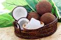 Bali: Studenci mogą opłacać czesne... kokosami