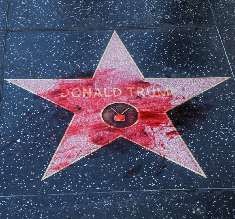 Nie tylko właściciele sklepów zabezpieczają swoje lokale przed ewentualnymi zniszczeniami spowodowanymi niezadowoleniem społecznym z wyników odbywających się właśnie w Stanach wyborów prezydenckich. Przezornością wykazały się również osoby odpowiedzialne za Hollywoodzką Aleję Gwiazd. 3 listopada, w dniu wyborów, znajdująca się tam gwiazda Donalda Trumpa została otoczona płotem.