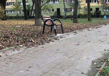 """""""Łatwiej zachować dystans"""". Jednoosobowe ławki w Warszawie"""