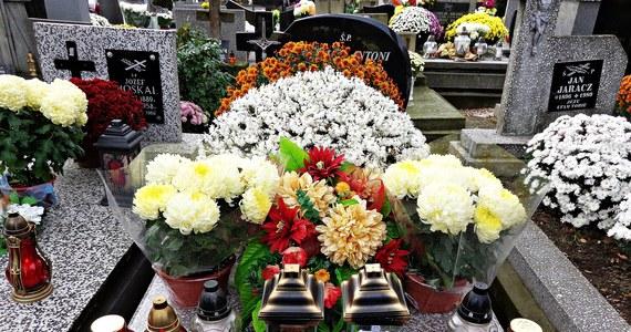 Prawie 87 milionów złotych - wnioski na taką kwotę wpłynęły do Agencji Restrukturyzacji i Modernizacji Rolnictwa w związku z akcją wykupu chryzantem. Chodzi o rekompensatę za niesprzedane kwiaty w związku z zamknięciem przez rząd cmentarzy 1 listopada. Rząd ogłosił tę decyzję w ostatniej chwili, tuż przed dniem Wszystkich Świętych.