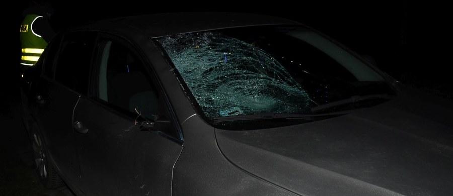 Do tragicznego wypadku doszło w Młodyninie na Mazowszu. Pijany kierowca śmiertelnie potrącił tam 14-latkę.