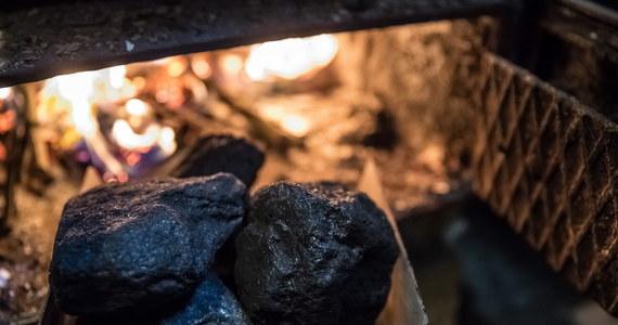 Dziewięć miesięcy w walce ze smogiem zostało zmarnowanych - alarmuje Najwyższa Izba Kontroli. Chodzi o nowe przepisy, które weszły w życie dwa lata temu i miały uniemożliwić palenie w domowych piecach, kotłach i kominkach najgorszymi paliwami, głównie mułem węglowym i tak zwanymi flotami, czyli odpadami przy produkcji węgla kamiennego. Najwyższa Izba kontroli wskazuje, że przez wadliwe rozporządzenia do kontroli jakości paliwa nie dochodziło. Wykazano także przypadki, w których ukarano przedsiębiorców sprzedających paliwo o wyższej jakości niż wynikało z dokumentów. Takich sytuacji miało być kilkanaście.