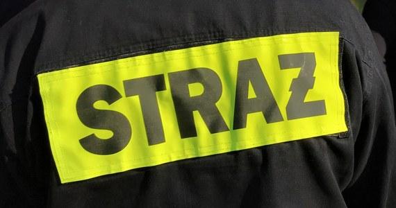 Cztery osoby z Mikołowa (Śląskie) - wśród nich dwoje dzieci - trafiły we wtorek wieczorem do szpitala z objawami podtrucia tlenkiem węgla - wynika z informacji straży pożarnej. Strażacy zmierzyli stężenie zabójczego czadu w budynku po tym, gdy zasłabło tam roczne dziecko.