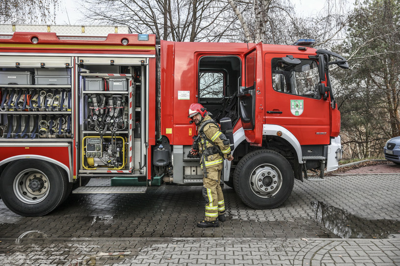/Fot. Piotr Jedzura /Reporter