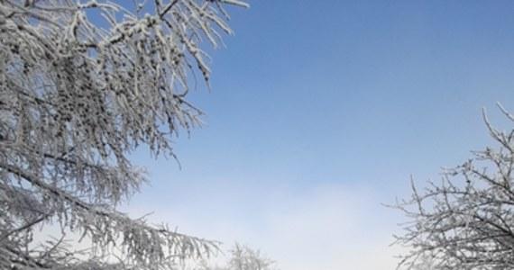 To pierwszy dzień 2021r na Jurze. Ale zimowa biel nie pojawiła się tam po intensywnych opadach śniegu. Tych nie było wcale. Za to od dwóch dni praktycznie nieprzerwanie, z wyjątkiem kilku godzin w ciągu dnia, Jurę spowija gęsta mgła. A ponieważ, zwłaszcza w nocy, jest kilka stopni mrozu, wszystko otula marznąca szadź... Co pewien czas przez opary mgły nieśmiało próbuje też przebijać się słońce...