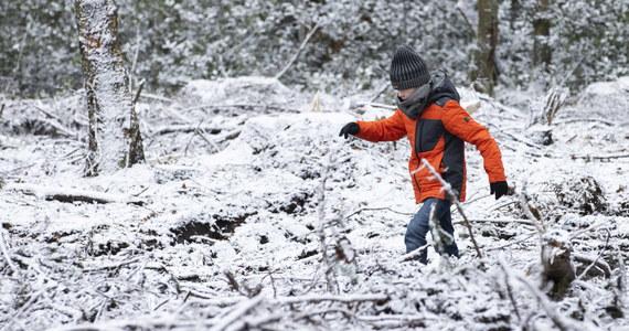 Niedziela jest ostatnim dniem przerwy świątecznej w szkołach z okazji Bożego Narodzenia i Nowego Roku. Nie oznacza to jednak, że od jutra uczniowie wracają do nauki. W poniedziałek zaczną się dwutygodniowe ferie zimowe. W tym roku wyjątkowo będą wcześniej niż w latach ubiegłych i w jednym terminie dla wszystkich uczniów w kraju.