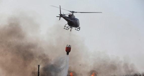 Śledztwo w sprawie pożaru w Biebrzańskim Parku Narodowym zostało umorzone. W ubiegłym roku spłonęło ponad 5 tysięcy hektarów lasów, a biegli ustalili, że przyczyną było podpalenie w kilku miejscach. Mimo to nie udało się ustalić winnych.