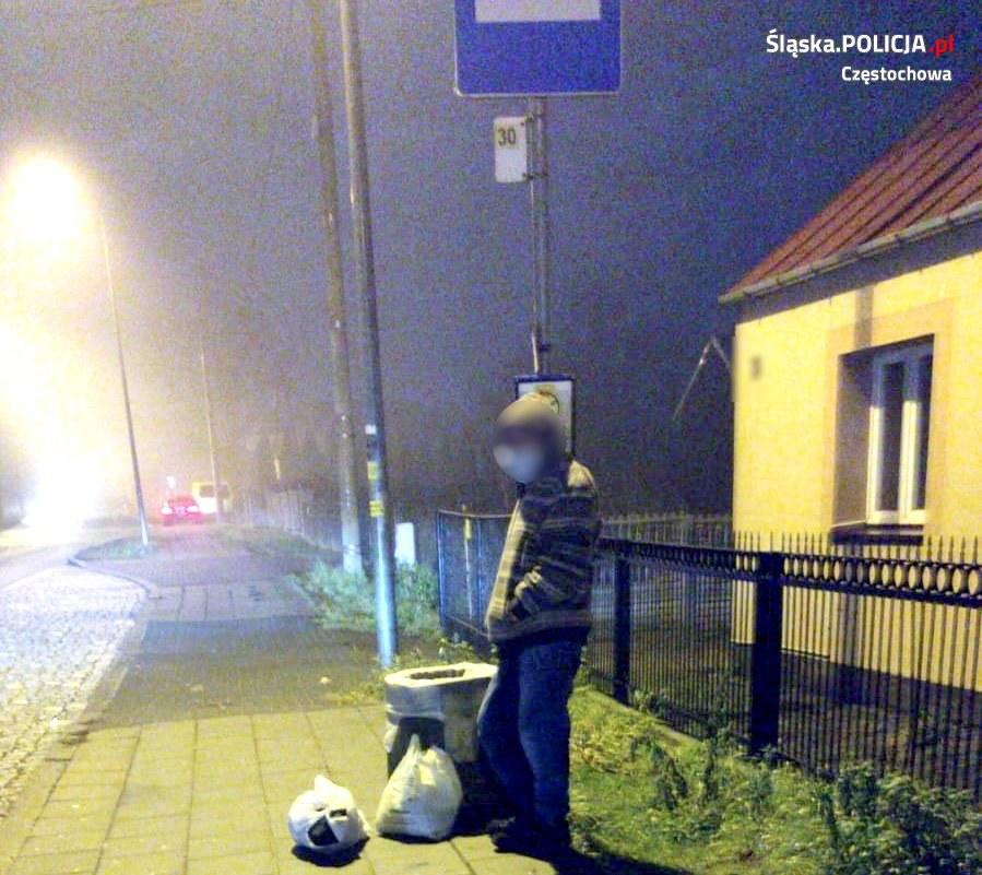 /Śląska policja /