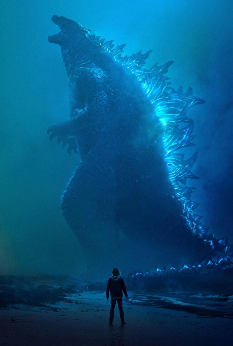 """Jedną z """"ofiar"""" niespodziewanej decyzji studia Warner Bros., która została ogłoszona na początku grudnia ubiegłego roku, było widowisko """"Godzilla vs. Kong"""". Warner, który jest dystrybutorem również tego filmu, zdecydował, że wszystkie filmy zaplanowane na 2021 rok będą miały równoczesną premierę w kinach oraz na należącej do koncernu WarnerMedia platformie streamingowej HBO Max. Nie wywołało to euforii."""
