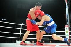 Boks: Gala PZB Suzuki Boxing Night