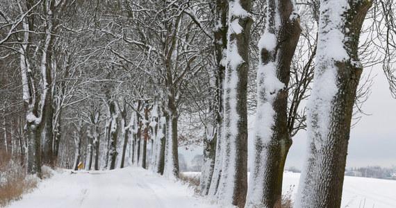 Zima zagościła w Polsce na dobre: Instytut Meteorologii i Gospodarki Wodnej wydał ostrzeżenia pierwszego i drugiego stopnia przed śnieżycami na południu kraju. Noc będzie mroźna - lokalnie minus 6 stopni Celsjusza. Śnieżnie i jeszcze zimniej będzie w kolejnych dniach - w nocy miejscami temperatura spadnie do - 20 stopni Celsjusza.
