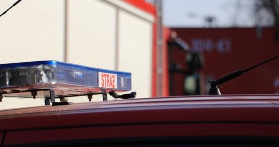 Strażacy znaleźli zwęglone ludzkie zwłoki w spalonej altance działkowej przy ul. Posłowickiej w Kielcach.