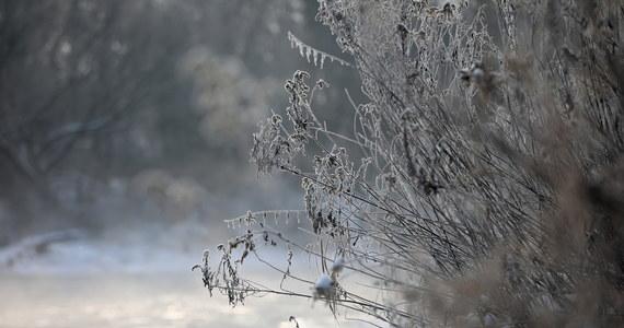 Siarczyste mrozy – na razie – nie ustępują. Na Podlasiu termometry pokazały ostatniej nocy niemal 23 stopnie mrozu, na Podkarpaciu zaś stacja Leszczowate zarejestrowała minus 23,8 stopnia. Mroźny był w Bieszczadach również poranek: w Ustrzykach Górnych słupki rtęci pokazały 11 stopni poniżej zera. W najbliższych dniach w całym kraju będzie jednak robić się coraz cieplej.