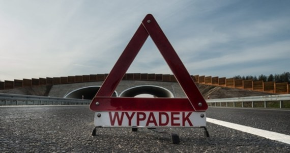 Ślisko i niebezpiecznie jest dzisiaj na drogach w Łódzkiem. Na trasie ekspresowej S8 w Wolborzu doszło do karambolu: zderzyło się tam siedem aut. Problemy, choć z innego powodu, były również niedaleko Strykowa: rondo w Sosnowcu zablokowały rolnicze ciągniki.