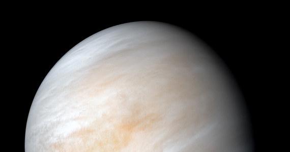 Międzynarodowy zespół astronomów wywołał we wrześniu ubiegłego roku prawdziwą sensację informując, że w gęstych chmurach otaczających planetę Wenus wykrył ślady fosforowodoru. Detekcja, dokonana z pomocą dwóch naziemnych radioteleskopów, zaskoczyła znawców Wenus, bowiem trudno byłoby ją wyjaśnić inaczej, niż hipotezą zakładającą tam istnienie życia. To życie musiałoby przetrwać w wysokich warstwach wenusjańskiej atmosfery. Grupa badaczy pod kierunkiem naukowców z University of Washington kwestionuje teraz tamto odkrycie. Ich zdaniem sygnał rzekomego fosforowodoru mógł pochodzić od zwykłego dwutlenku siarki.