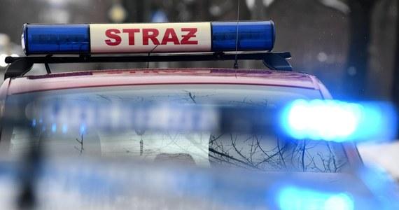 Do groźnego wypadku drogowego doszło w Miodarach niedaleko Oleśnicy na Dolnym Śląsku. Rannych zostało pięcioro dzieci.