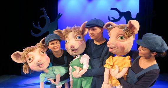 Trzy świnki Obejrzyj Spektakl Online Rmf 24