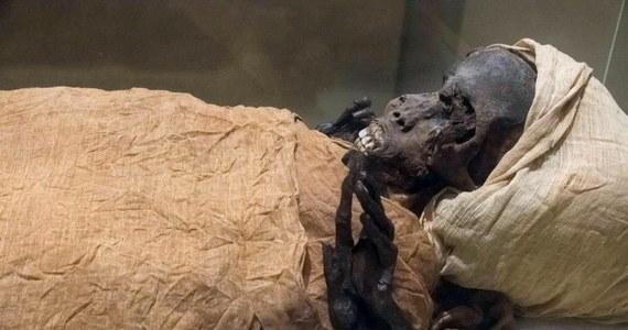 Gwałtowna śmierć faraona Sekenenre Tao II od dawna interesowała naukowców. Król ten rządził Egiptem przed 3 600 laty. Wiadomo było, że zginął brutalną śmiercią, zadano mu wiele ran. Dzięki najnowszej technologii naukowcy doszli do wniosku, w jakich okolicznościach.