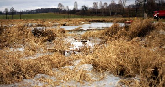 Kilku kolegów weszło na zamarzniętą rzekę Nidę w Pińczowie w woj. świętokrzyskim. Załamał się pod nimi lód. Jeden z nich - 12-latek - wpadł do wody i nie mógł się wydostać na brzeg. Chłopca uratowali strażacy.