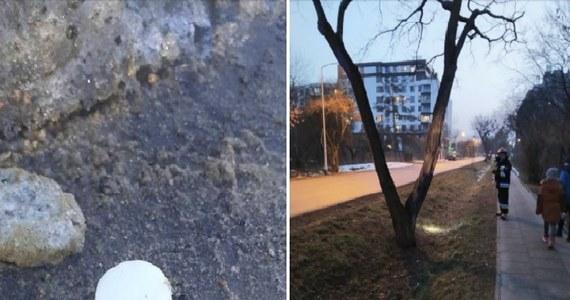 Podejrzane kapsułki w kilku miejscach na warszawskich Bielanach. 26 tabletek już zabezpieczyła warszawska straż miejska. O sprawie poinformował w mediach społecznościowych burmistrz dzielnicy.