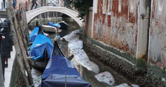Wenecja, której mieszkańcy przyzwyczaili się do tzw. wysokiej wody, może też zadziwić przeciwnym zjawiskiem - wody tak niskiej, że wyschła tam większość kanałów. Canal Grande odsłonił zaś swoje brzegi.