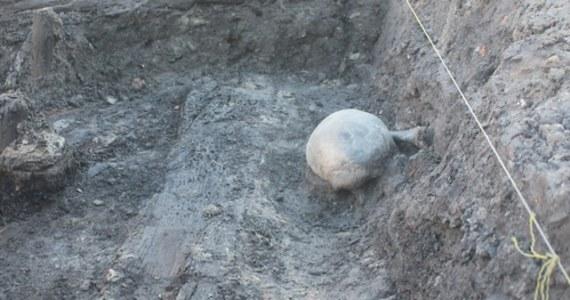 Coraz więcej danych wskazuje, że szczątki znalezione podczas prac rewitalizacyjnych na rynku w Bochni należały do kobiet oskarżanych o czary. Jak wyjaśniają archeolodzy, kości są nadpalone, a w źródłach pisanych znaleźć można informacje, że w tym miejscu dokonywano egzekucji czarownic.