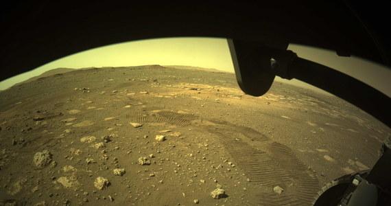 Amerykański łazik Perseverance wykonał swoją pierwszą jazdę po powierzchni Marsa. Pokonał 6,5 metra w ciągu 33 minut - poinformowała amerykańska agencja kosmiczna NASA. Perseverance wylądował na Czerwonej Planecie przed dwoma tygodniami.