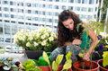 Jak wybrać ziemię pod uprawę warzyw i ziół?