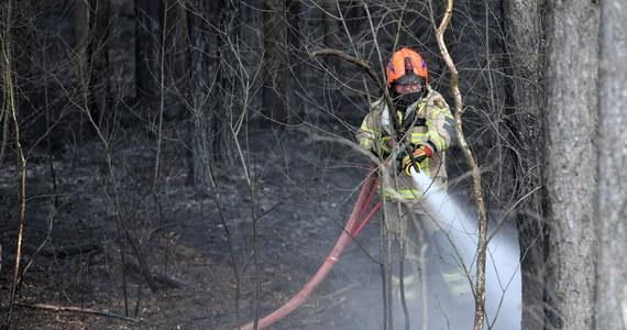 Tylko w ostatni weekend w całym kraju doszło do 1548 pożarów traw. Najwięcej odnotowano ich na Mazowszu – 264. Od początku roku trawy, łąki i nieużytki rolne paliły się ponad 8,7 tys. razy. Strażacy ostrzegają: wypalanie traw może skończyć się tragedią.
