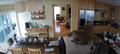 Filigranowe terriery kontra niedźwiedź. Domowy monitoring nagrał spektakularne starcie