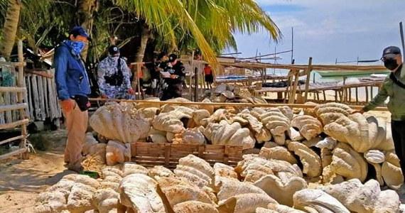 Na Filipinach służby przechwyciły 200 ton muszli gigantycznych małży. Były przygotowane do przemytu. Ich wartość szacuje się na blisko 25 mln dolarów.