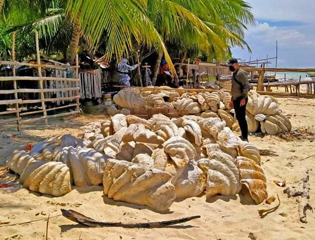 /foto. Philippine Coast Guard /PAP/EPA