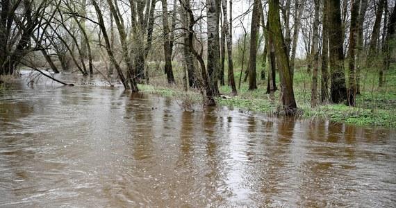Instytut Meteorologii i Gospodarki Wodnej ogłosił przed południem ostrzeżenia hydrologiczne drugiego stopnia dla rzek San i Wisłok w województwie podkarpackim. Wcześniej podobnymi alertami objęto część województwa świętokrzyskiego.
