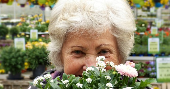 Ponad 25 tysięcy złotych emerytury co miesiąc otrzymuje krajowy rekordzista. Zakład Ubezpieczeń Społecznych ujawnił, ile wynoszą najwyższe wypłacane świadczenia emerytalne. Nie brakuje takich, którym ZUS wypłaca po kilkanaście tysięcy złotych.