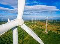 Pekao włączy się mocniej w transformację energetyczną w Polsce