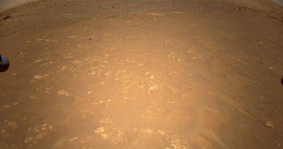 """NASA opublikowała niezwykłe zdjęcie wykonane podczas trzeciego lotu helikopterka Ingenuity. Jego kamera uchwyciła w samym rogu kadru, ujęcie macierzystego łazika Perseverance. Ingenuity przygotowuje się do czwartego, przedostatniego lotu na Marsie. Ten test rozpocznie się dziś po 16:12 polskiego czasu, ma potrwać 117 sekund. Ingenuity poleci z prędkością 3,5 metra na sekundę, na wysokości 5 metrów i oddali się w poziomie o 133 metry, by potem wrócić na miejsce startu. O tym, dlaczego helikpopterek nie wzniesie się wyżej i jakie są plany budowy kolejnych, już naukowych helikopterów na Marsa mówi RMF FM Artur Chmielewski z Jet Propulsion Laboratory, autor książki """"Kosmiczne wyzwania""""."""