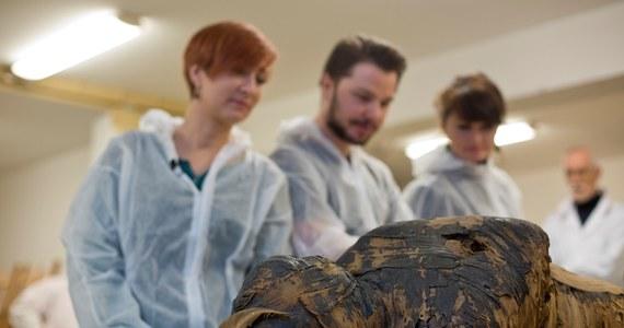 Długo sądzono, że pod zwojami bandaży kryje się kapłan Hor-Dżehuti. Teraz polscy naukowcy odkryli, że mumia, która trafiła do Polski w XIX wieku, to zabalsamowane zwłoki kobiety w ciąży. Mumia ta znajduje się w Muzeum Narodowym w Warszawie.