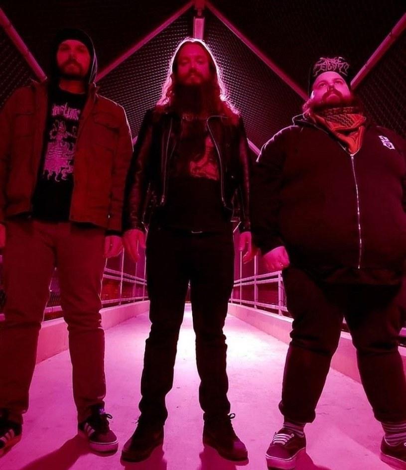Amerykańskie trio Fluids wyda na początku czerwca drugą płytę.