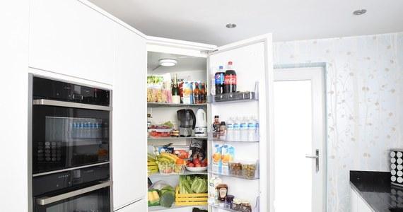 Lodówka jest jednym z najważniejszych urządzeń znajdujących się w domu. Przy jej wyborze, przede wszystkim powinno się kierować rozmiarem pomieszczenia, w którym docelowo ma się ona znajdować. Oprócz tego ważna jest: moc, energooszczędność, oraz funkcjonalność. Jaką lodówkę najlepiej wybrać do domu?