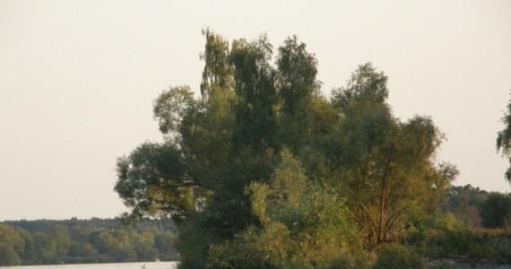 Synoptycy zapowiadają dziś duże zachmurzenie z przelotnymi opadami deszczu. Wydano także ostrzeżenia przed burzami na południu kraju. Szczególnie trudne warunki pogodowe panują obecnie w Tatrach. Na Śląsku z kolei poziom wód w wielu miejscach nadal przekracza stany ostrzegawcze. Do Warszawy fala wezbraniowa ma dopiero dotrzeć.